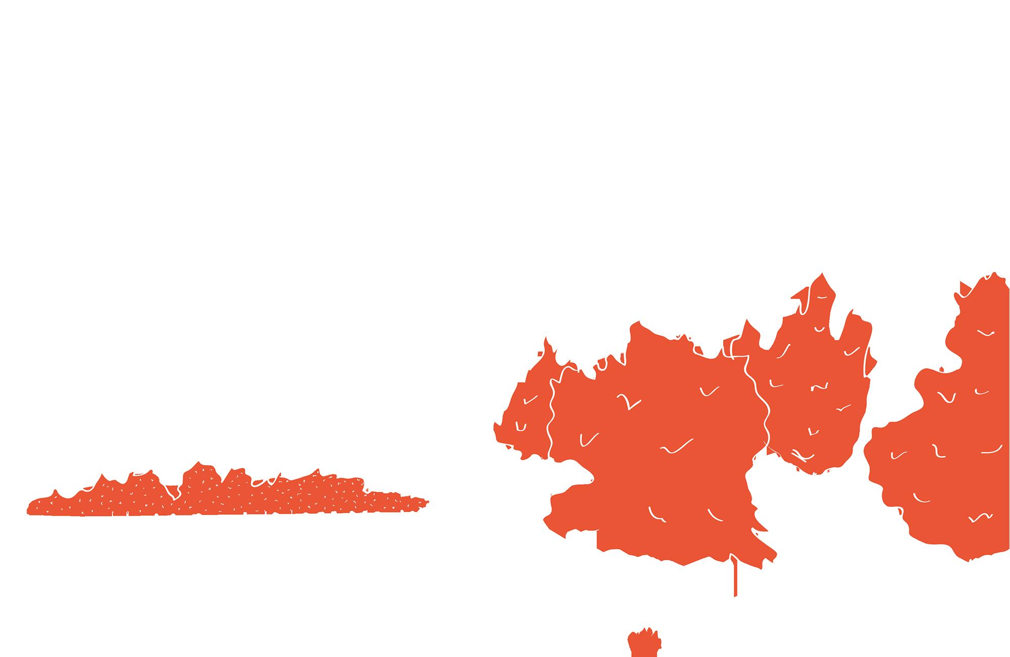 schizzo-perugia